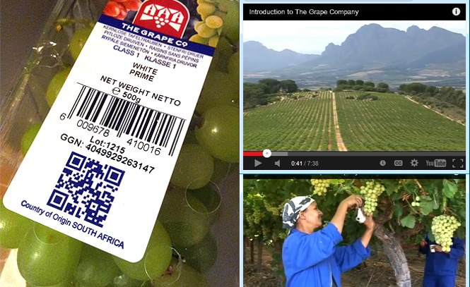 QR code van The Grape Co